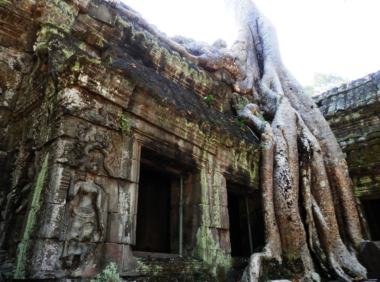 TaProhm2_Easy-Resize.com
