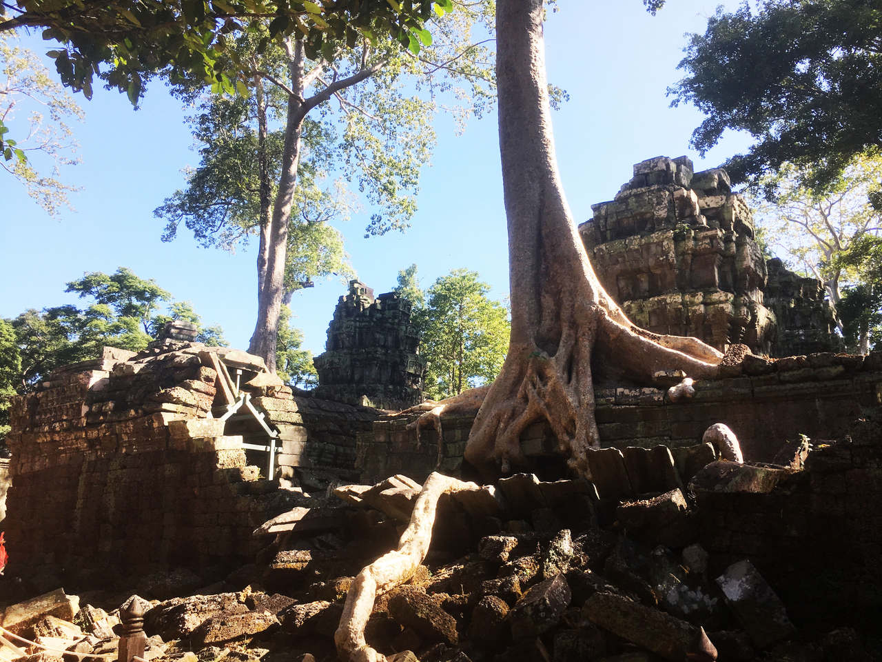 TaProhm4_Easy-Resize.com