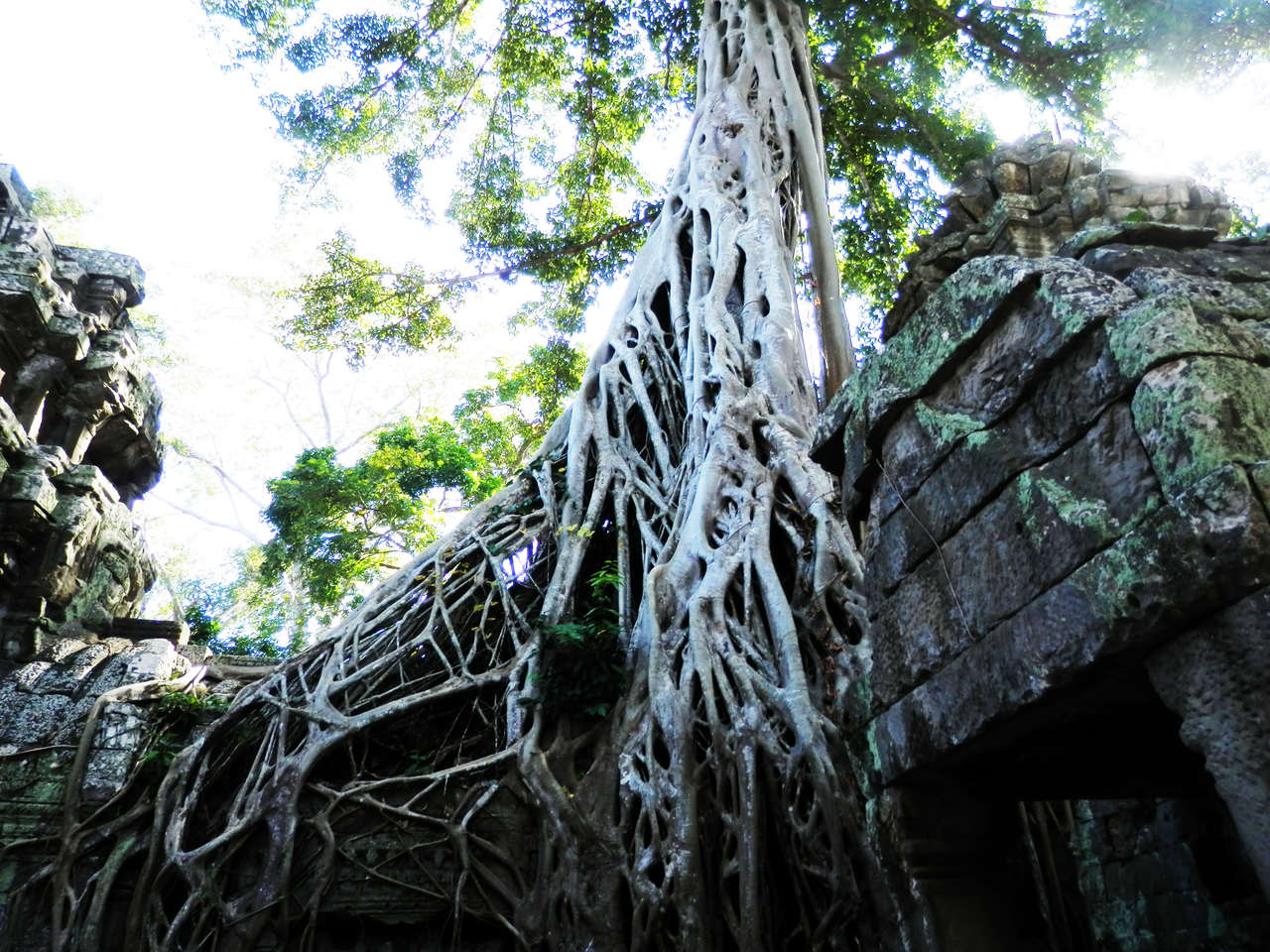 taprohm5_Easy-Resize.com